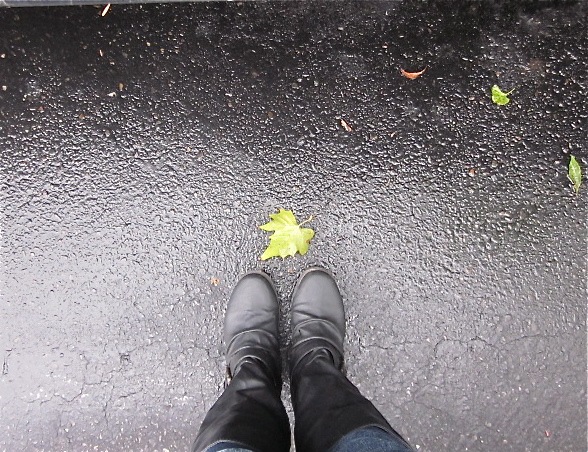 Fall Boots and Leaves