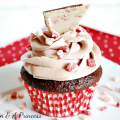 Chocolate Peppermint Cupcake Recipe