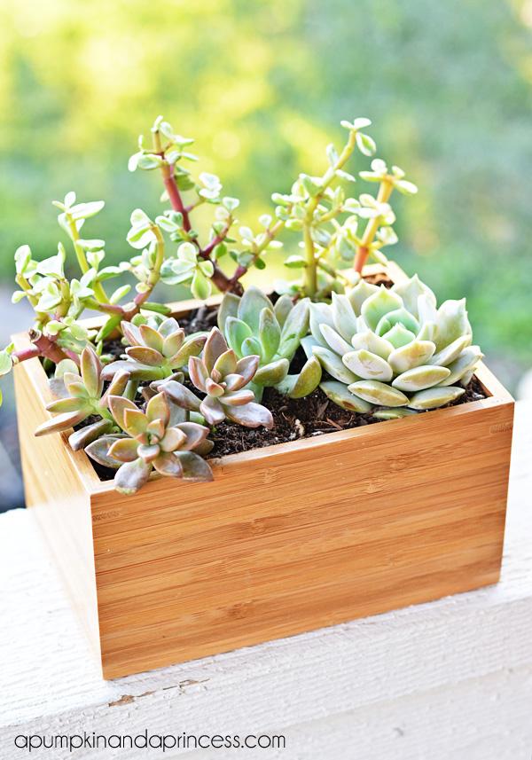 Ikea Hack - Succulent Planter