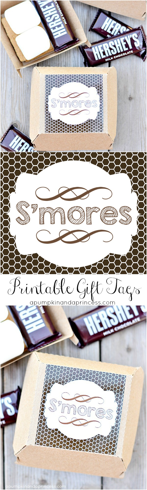 S'mores Printable Tags - Party Favor Boxes