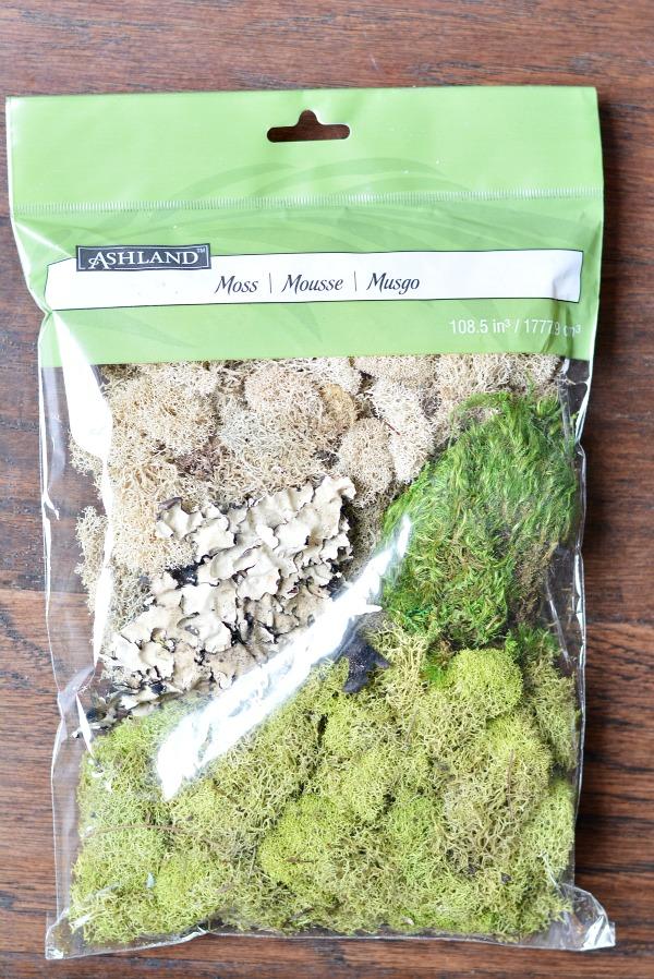 Moss Crafts