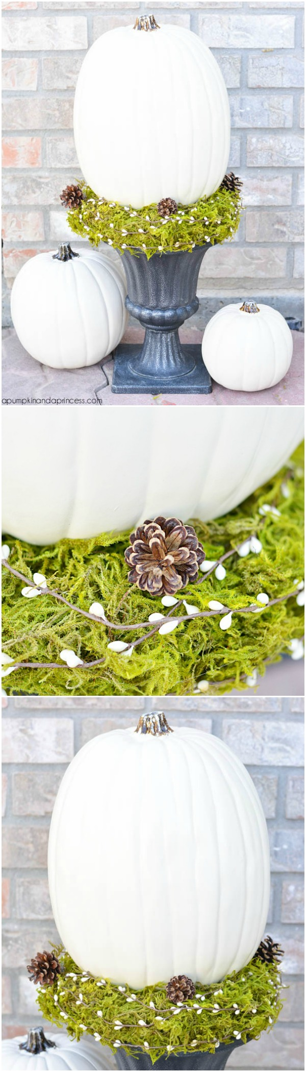 DIY-Pumpkin-Topiary-tutorial