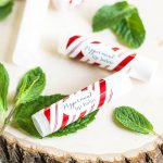 Homemade Peppermint Lip Balm