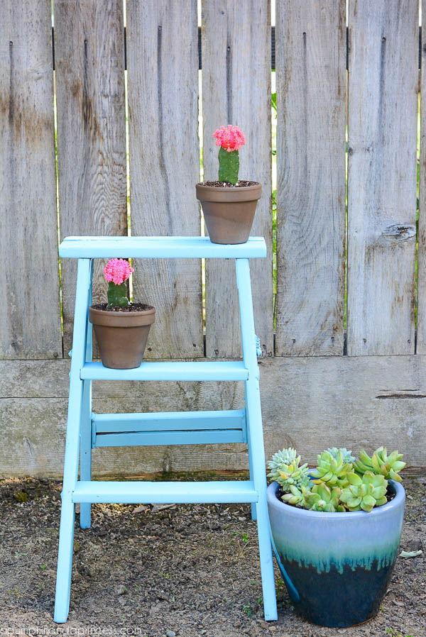 Vintage Ladder Planter