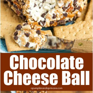 Easy dessert cheese ball recipe rolled in chocolate chips, pecans, and toffee