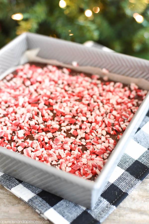 Easy Peppermint Fudge Recipe