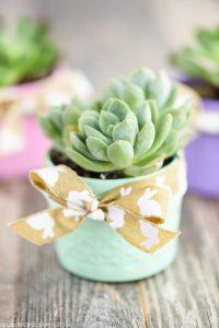DIY Mason Jar Succulent Planters