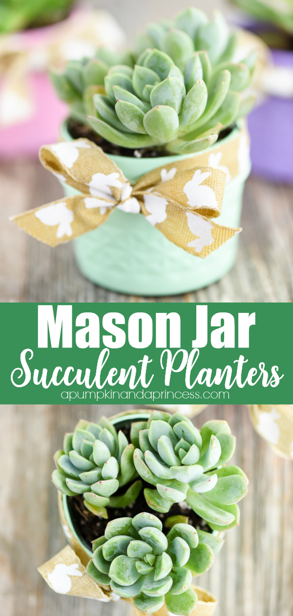 How to make mason jar succulent planters