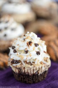 Samoas Ice Cream Cupcakes - satisfy your Girl Scout cookie cravings with this decadent ice cream cupcake recipe. Layers of chocolate cake, samoas ice cream, whipped topping, and toasted coconut.
