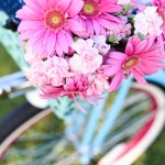 Beach Cruiser - Flower Basket