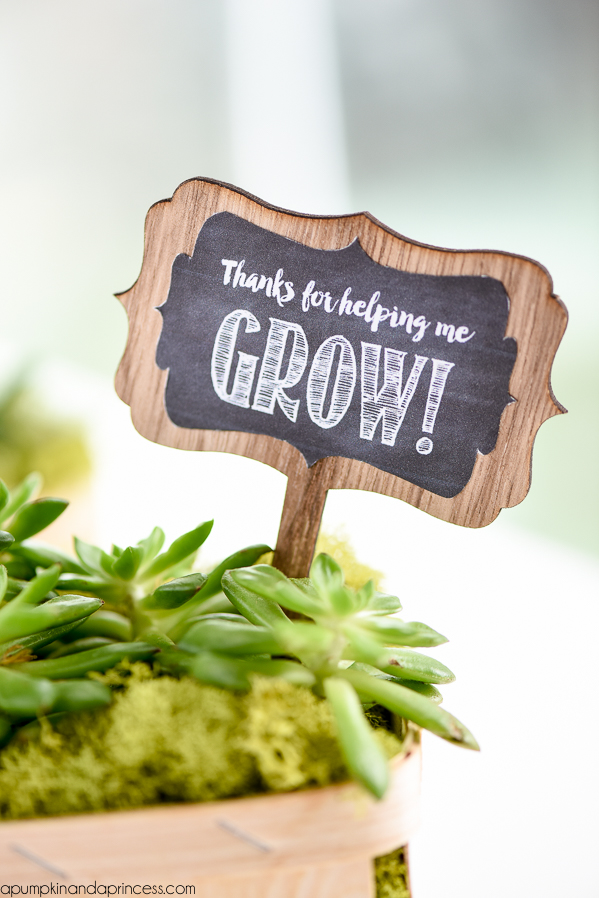 photo regarding Thanks for Helping Me Grow Free Printable known as Succulent Present - Due for encouraging me improve - A Pumpkin And