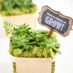 Succulent Gift – Thanks for helping me grow