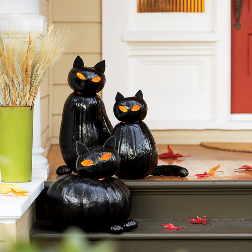 diy-black-cat-pumpkins