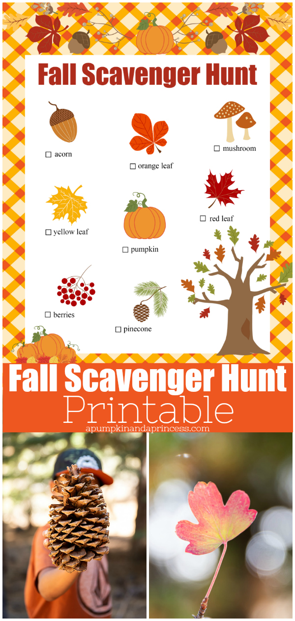 graphic regarding Fall Scavenger Hunt Printable named Slide Scavenger Hunt Picnic Options - A Pumpkin And A Princess