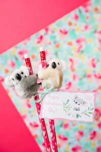Koala Pencil Topper Valentines