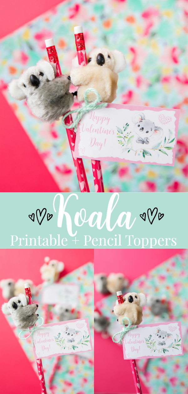 Koala Valentine's Day printable and pencil toppers