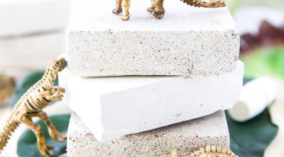 DIY Dino Dig Excavation Kit How To