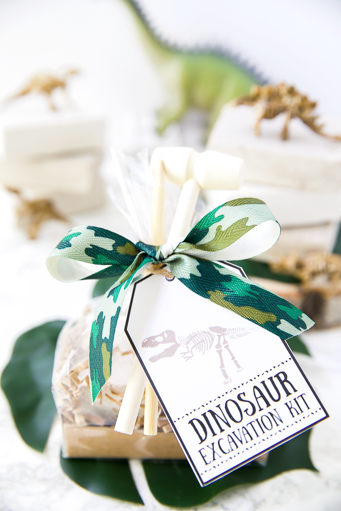 Dinosaur party favor ideas - DIY excavation dig kit
