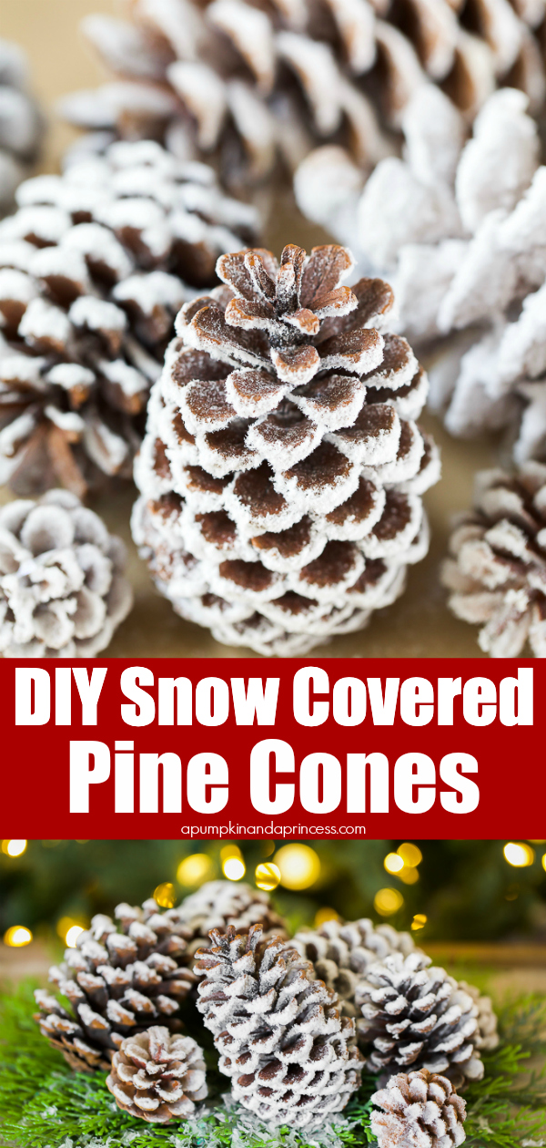 the best way to make snow covered pine cones - 3 easy methods!