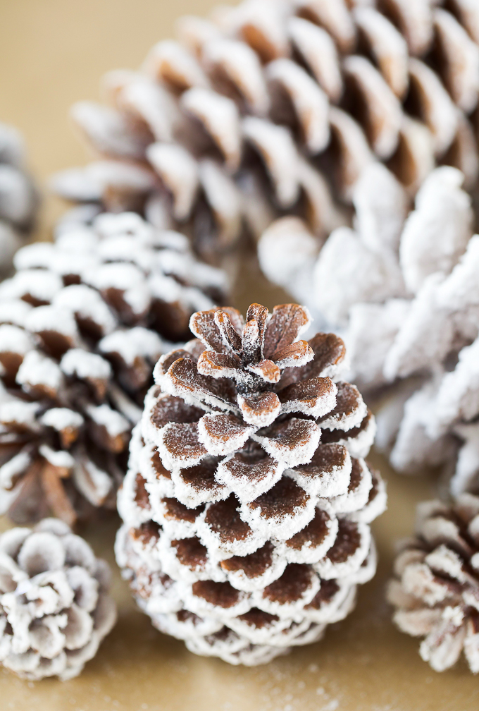 pine cones covered in real flocking powder - easy diy craft for Christmas