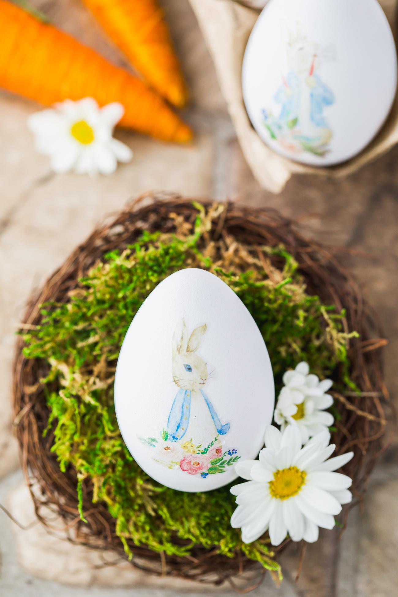 watercolor Peter Rabbit egg craft decor